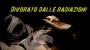 DIVORATO DALLE RADIAZIONI – La terribile storia di HiroshiOuchi